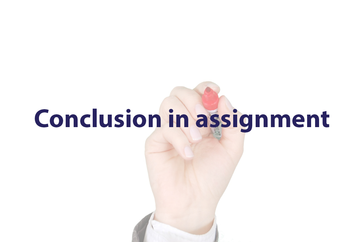 conclusion in assignment